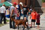 Families enjoy San Pedro Valley Fair