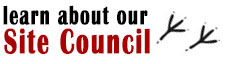 Learn about our Site Council