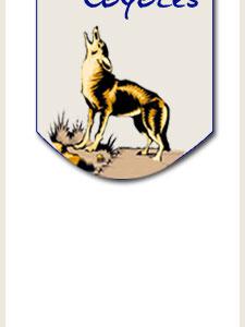 logo banner slice