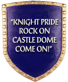 Knight Pride Rock On Castle Dome Come On