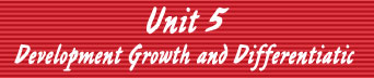 Unit 5: Development, Growth, and Differentiatic