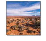 AZ Desert