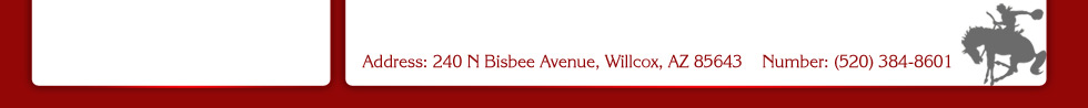 240 N Bisbee Ave, Willcox, AZ 85643