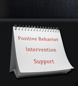 Positive Behavior Intervention Support