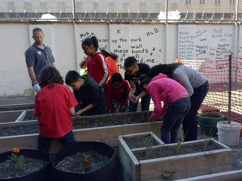 5th Graders in the Garden