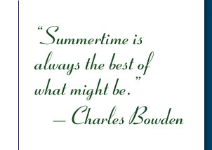 Summertime is always the best of what might be. - Charles Bowden