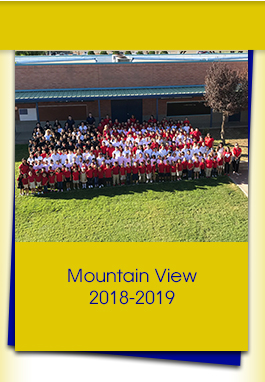 Mountain View 2018-2019