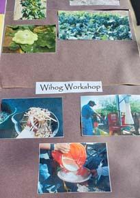 Wilhog Workshop collage