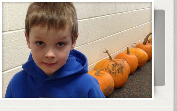 Boy with pumpkins