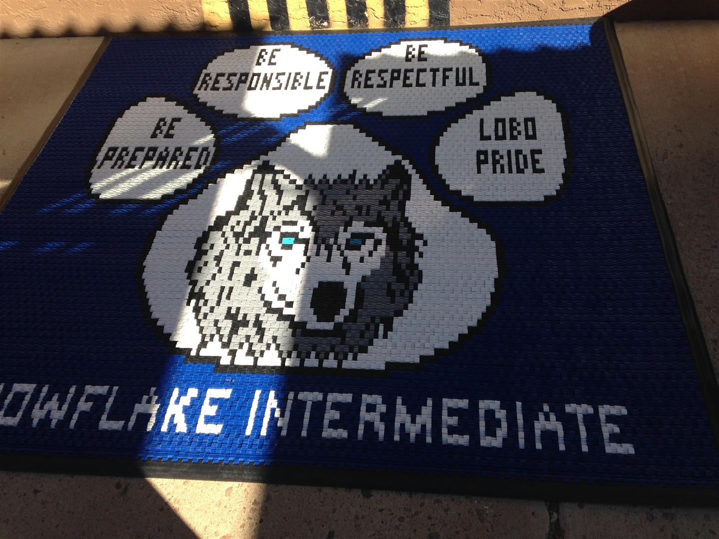 PTSO purchases new mat for school