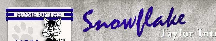 Snowflake Taylor Intermediate