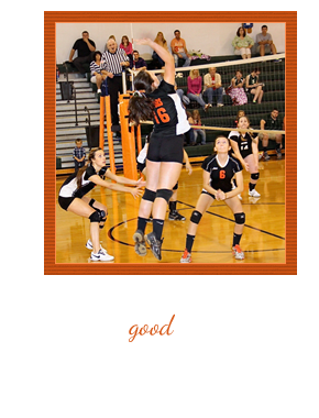 Volleyball Player in Action, Quote